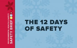 Image for 12 days of Safety poster