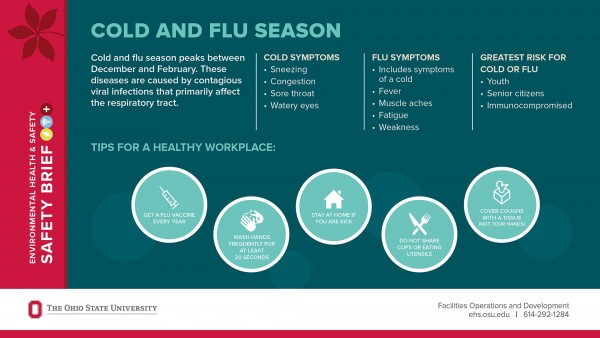 graphic showing differences of colds and flu and who's at risk and tips to stay healthy